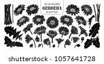 set of isolated silhouette... | Shutterstock .eps vector #1057641728