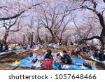 Small photo of Tokyo, Japan - March 25, 2018: Cherry blossoms or Sakura in full bloom at Asukayama Park Enjoying the transient beauty of Hanami festival cherry blossoms is the Japanese people.