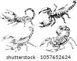 vector drawings sketches... | Shutterstock .eps vector #1057652624