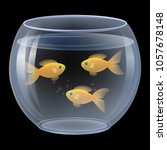 vector. goldfish swimming in a... | Shutterstock .eps vector #1057678148