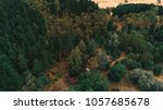 aerial view of trees in... | Shutterstock . vector #1057685678