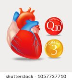 coenzyme q10 and omega 3. heart.... | Shutterstock .eps vector #1057737710