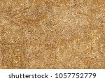 Seamless Texture Hay  Straw