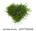 green grass with dirt  soil in... | Shutterstock . vector #1057758338