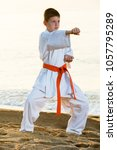 young boy practicing karate... | Shutterstock . vector #1057795289