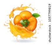 orange bulgarian pepper... | Shutterstock .eps vector #1057799819