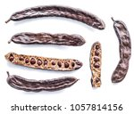 carob pods and carob powder on... | Shutterstock . vector #1057814156