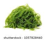 laminaria  kelp  seaweed... | Shutterstock . vector #1057828460