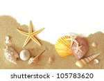 Beach Sand  Shells And Seastar...