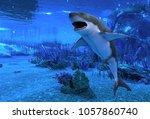 great white shark swimming...   Shutterstock . vector #1057860740