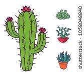 cactus home nature vector... | Shutterstock .eps vector #1058048840