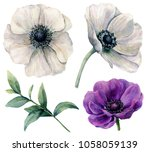 watercolor white and violet... | Shutterstock . vector #1058059139