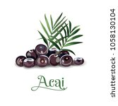 acai berries for lables | Shutterstock .eps vector #1058130104