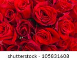 Stock photo red roses background natural texture of love 105831608