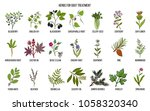 collection of natural herbs for ... | Shutterstock .eps vector #1058320340
