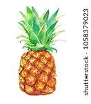 pineapple  on a white... | Shutterstock . vector #1058379023