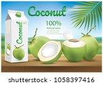 coconut water in box... | Shutterstock .eps vector #1058397416