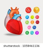 healthy heart. vitamins and... | Shutterstock .eps vector #1058461136