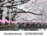 tokyo  japan   march 24th  2018 ... | Shutterstock . vector #1058480360