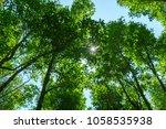 amazing panorama view of bright ...   Shutterstock . vector #1058535938