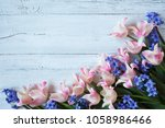 pink tulips and blue hyacinths... | Shutterstock . vector #1058986466