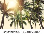 palm trees against sunny... | Shutterstock . vector #1058992064