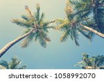 palm trees against sunny... | Shutterstock . vector #1058992070