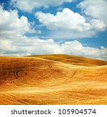 scenic view of typical tuscany... | Shutterstock . vector #105904574
