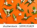 orange paper background with... | Shutterstock . vector #1059151829