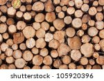 Sawed Ends Of Logs Stacked In A ...