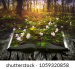 many spring flowers on the... | Shutterstock . vector #1059320858