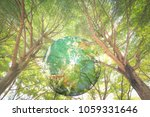 world wood day concept  earth... | Shutterstock . vector #1059331646