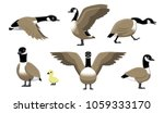 Canada Goose Flying Cartoon...