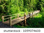 small wooden bridge among the... | Shutterstock . vector #1059374633