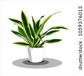 dracaena fragrans   the... | Shutterstock .eps vector #1059376013