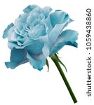 turquoise  rose.  flower  on a... | Shutterstock . vector #1059438860