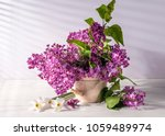 still life with lilac | Shutterstock . vector #1059489974