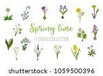 spring flowers set crocus ... | Shutterstock .eps vector #1059500396