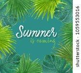 tropical background summer... | Shutterstock . vector #1059553016