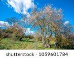 beautiful landscape around... | Shutterstock . vector #1059601784