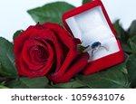 romantic still life. beautiful... | Shutterstock . vector #1059631076