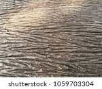 selected focus. close up of...   Shutterstock . vector #1059703304