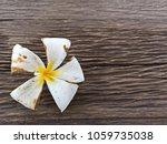 selected focus. white flower or ...   Shutterstock . vector #1059735038