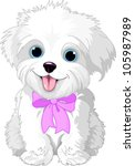 Stock vector cute white lap dog puppy posing with pink ribbon 105987989