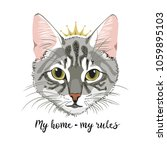 grey cat with crown princess... | Shutterstock .eps vector #1059895103