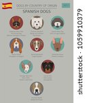 dogs by country of origin.... | Shutterstock .eps vector #1059910379