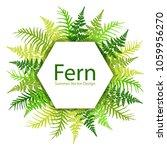 fern frond tropical leaves...   Shutterstock .eps vector #1059956270
