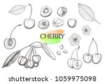 hand drawn cherry set isolated... | Shutterstock .eps vector #1059975098
