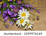 hello summer background.... | Shutterstock . vector #1059976169