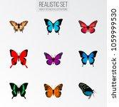 set of moth realistic symbols... | Shutterstock .eps vector #1059999530